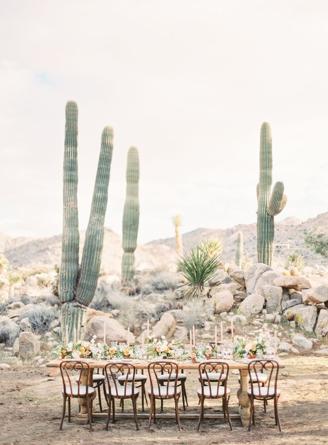 Gorgeous floral desert wedding inspiration: http://www.stylemepretty.com/2017/04/18/kayla-barker-bows-arrows-floral-photography-workshop-joshua-tree/ Photography: Kayla Barker - http://www.kaylabarker.com/
