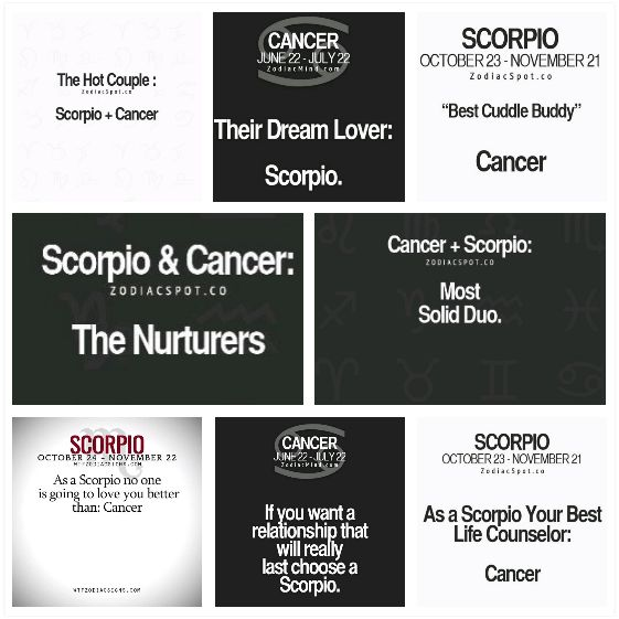 Cancer hookup a scorpio quotes for facebook
