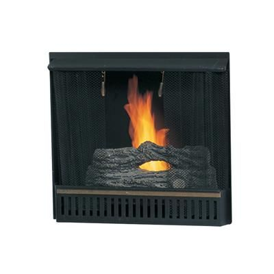 Paramount 23 In Gel Fireplace Insert Gf Insert Home Depot Canada Basement Pinterest