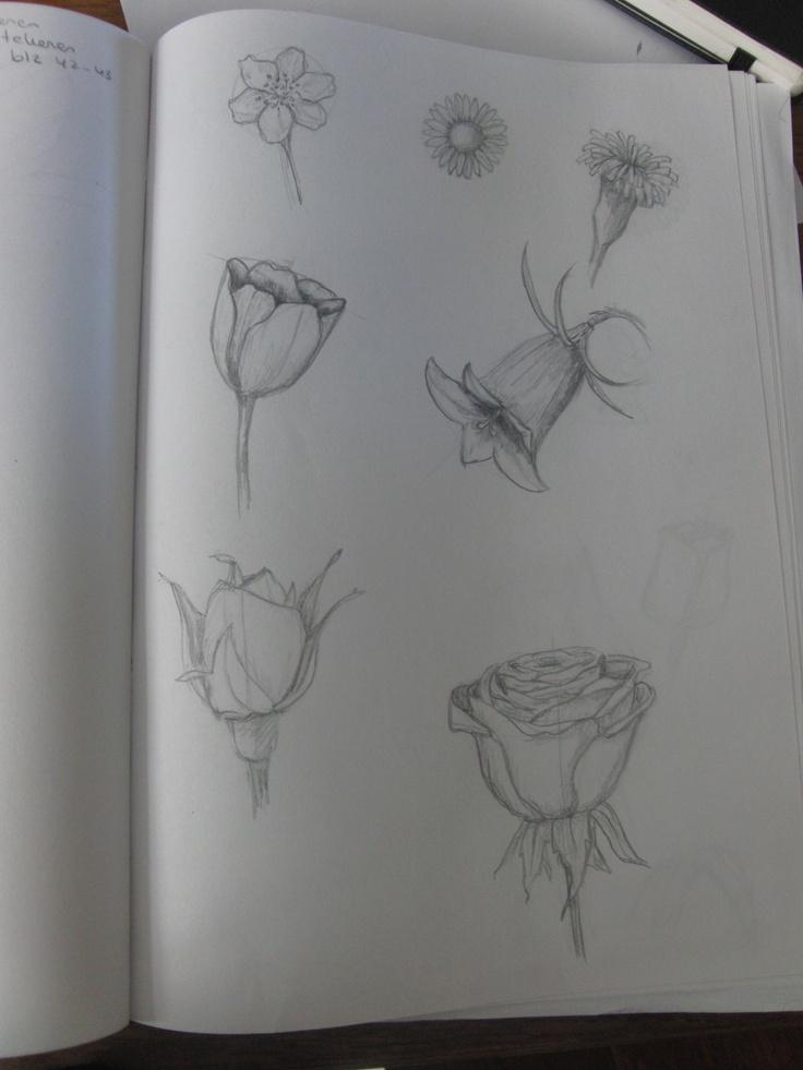 bloemen schetsen