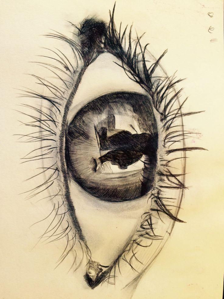 Biro drawing of an eye.