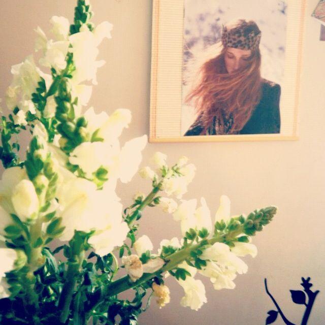 #flores #rapsodia #live #home ❤❤❤❤