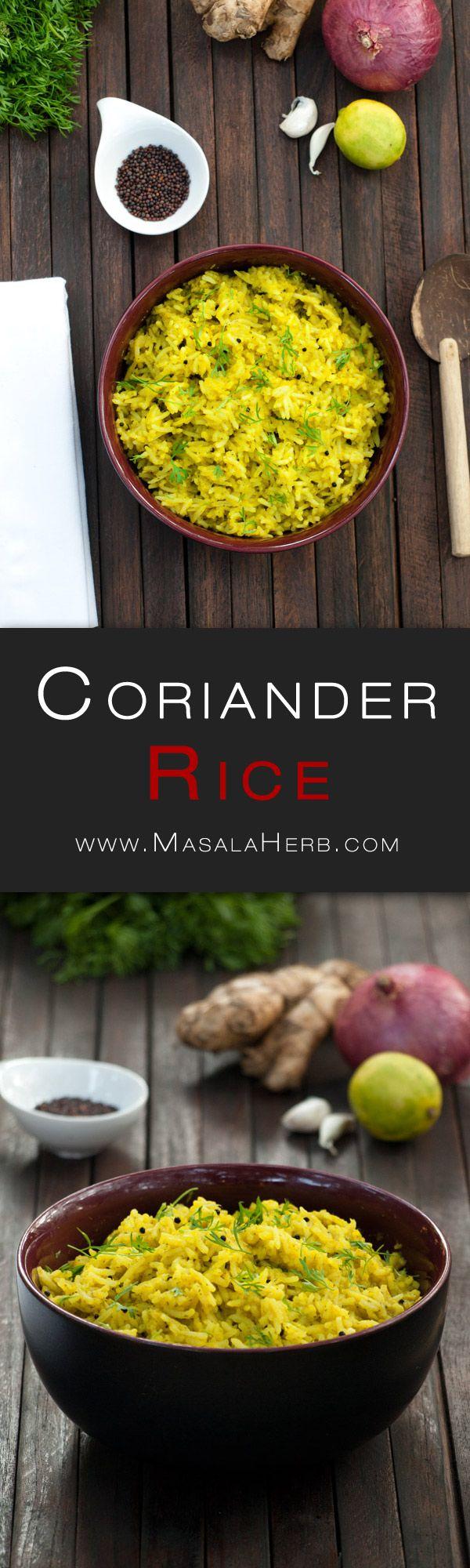 Coriander Rice Recipe – How to make Coriander Rice – Cilantro Rice www.MasalaHerb.com #Recipe #Indianfood #spicy