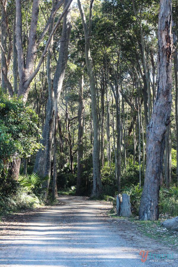 Murramarang National Park, Australia