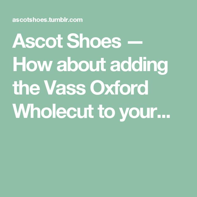 Ascot Shoes — How about adding the Vass Oxford Wholecut to your...