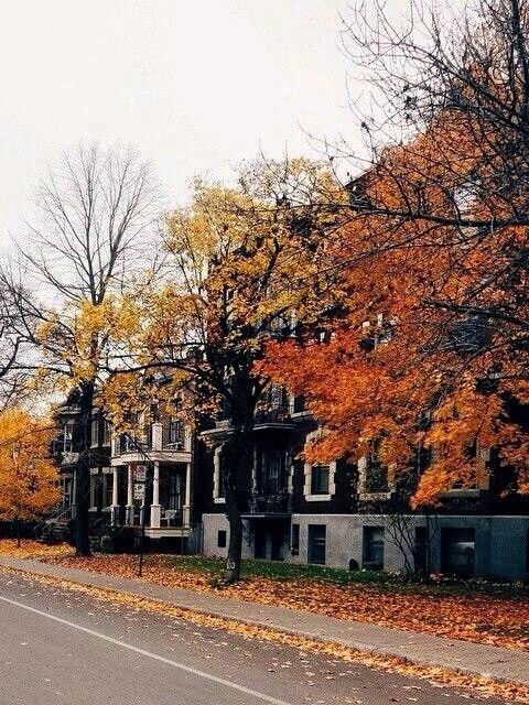 Image about tumblr in Fall/Autumn by alannaceleste