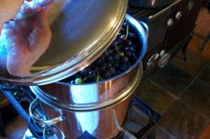 Granny Miller - How to use a steam juicer