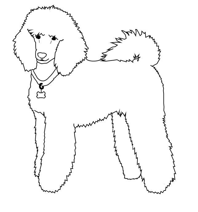Free Poodle Line Art By Koolkadoptables D5pl8y7 Png 644 690 Pixels Poodle Drawing Dog Line Drawing Poodle