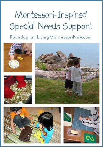 Montessori-inspired special needs resources organized according to specific special needs