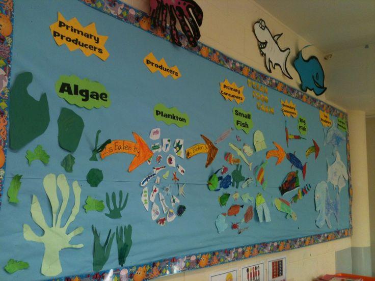 Ocean food chain in my 2nd grade classroom