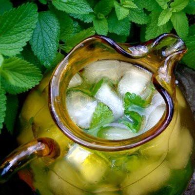 For more info about Saponins can visit http://www.immortalitea.com/jiaogulan-tea-gynostemma-pentaphyllum-p-229.html