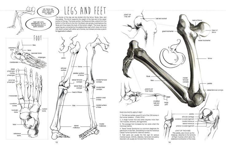 Legs and feet Art Kink