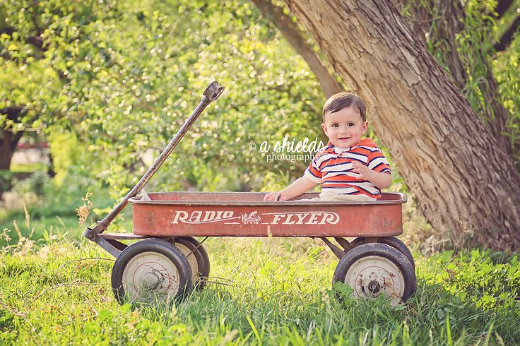 9 Month Session Radio Flyer Wagon Thompson Park Baby