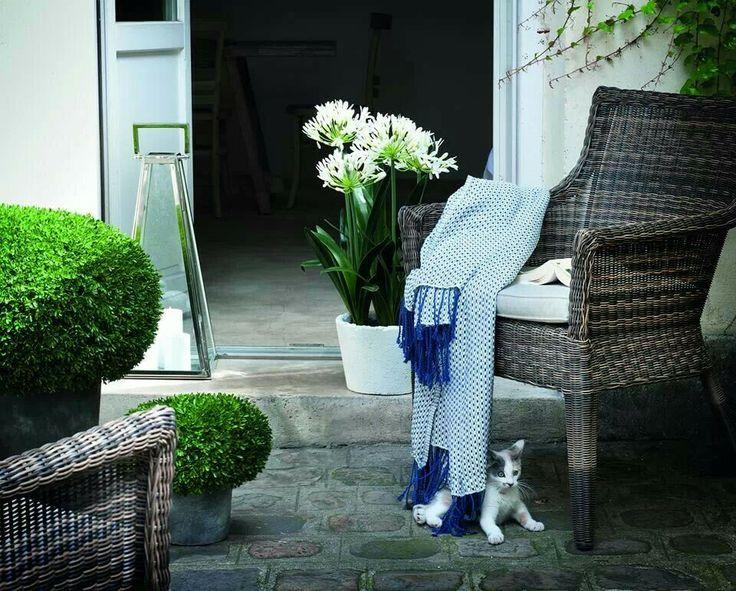 55 best sia home fashion spring collection 2013 images. Black Bedroom Furniture Sets. Home Design Ideas