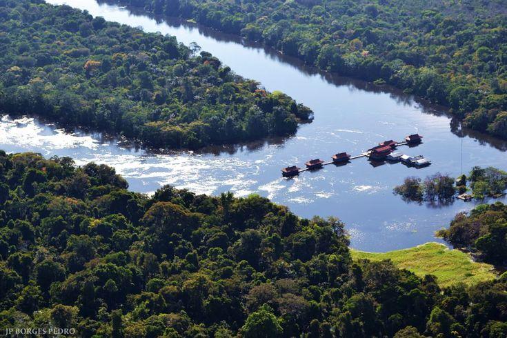 Brazilie Amazone regenwoud Mamiraua Uacari Lodge (2)