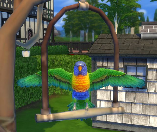 Sims 4 CC's - The Best: Pet Decor by BigUglyHag
