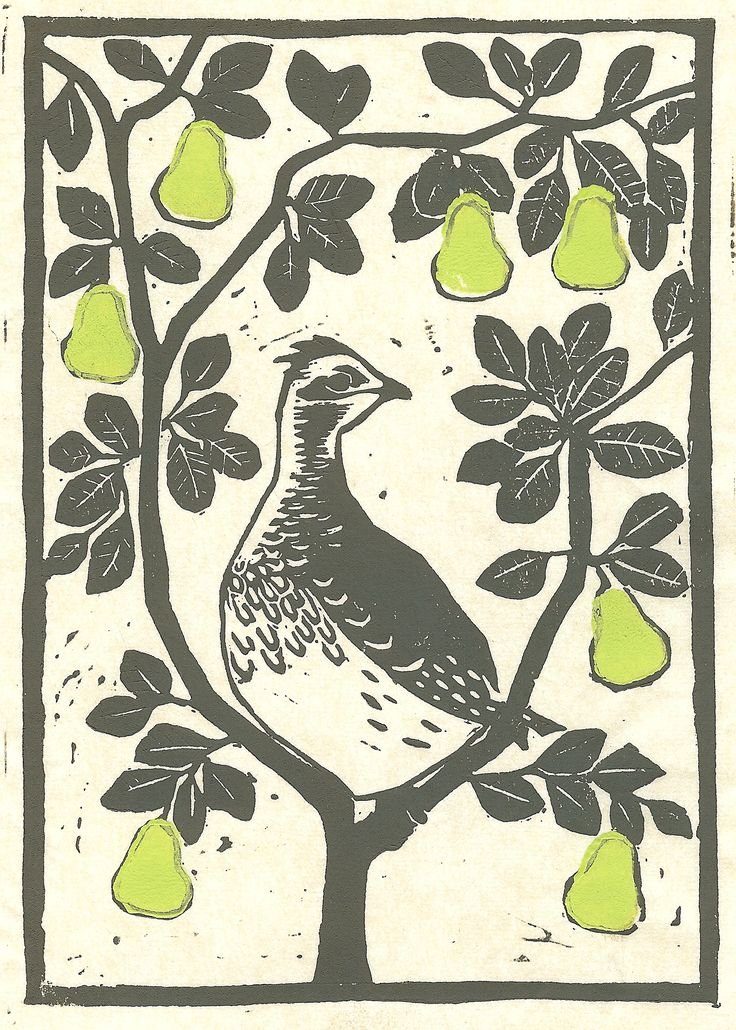 1st day of christmas....a partridge in a pear tree