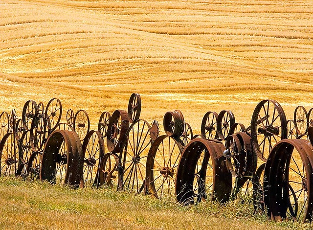 """Migration of wheels. """"Part of the Dahmen's farm fence built from the wheels."""" Photo: sergei antonov on flickr"""