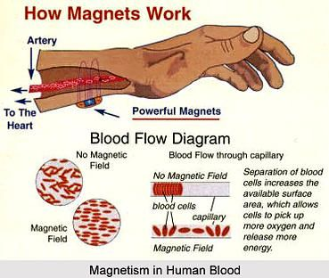 Don't take my word for it, try Magnet therapy for yourself. Energetix Bingen is one of the companies that offers high quality, magnetic bracelets and other jewelry. We just happens to design them into really nice designs. order here: https://www.energetix.tv/shop/collection/