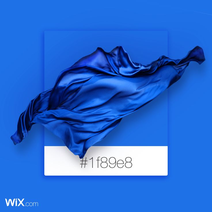 Color Palette Inspiration | Ocean Blue | # 1f89e8
