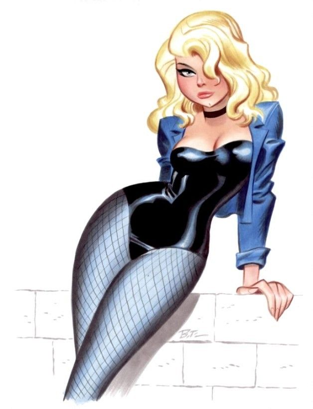 Black Canary...how'd she end up as a pin-up girl?                                                                                                                                                                                 Plus