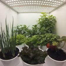 Resultado de imagem para plantário - iluminação automática horta indoor