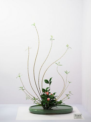 Very graceful ikenobo arrangement with slender branches making wonderful curves