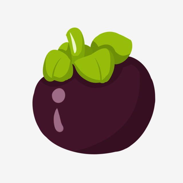 Gambar Delicious Buah Manggis Kartun Makanan Buah Buahan Yang Lazat Manggis Png Dan Psd Untuk Muat Turun Percuma Ilustrasi Buah Buah Ilustrasi