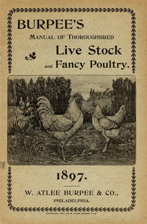 Burbee's Manual of the Thoroughbred Live Stock and Fancy Poultry, 1897