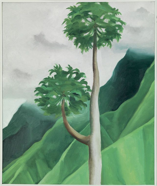 Pineapple expressionism: Georgia O'Keeffe and Ansel Adams in Hawaii - : Museum Shows  Papaya Tree, 'Iao Valley-Maui. 1939 Oil on Canvas.