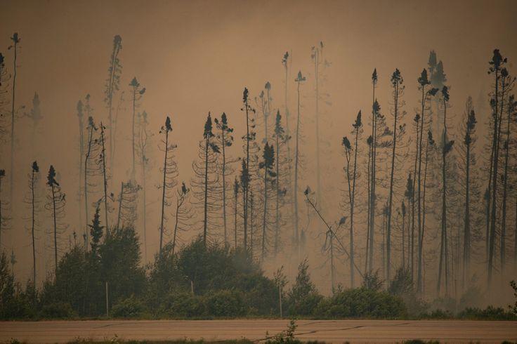 Corey Hardcastle/Saskatchewan Ministry of Environment