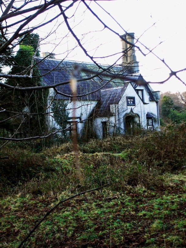 This abandoned house sits on a large property outside the quaint town of Killarney in southwestern Ireland.