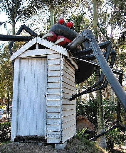 Big Redback  Brisbane, QLD It's hard to get more quintessentially Aussie than a Redback Spider and an outdoor dunny, the only difference here is that the Redback isn't under the seat, it's on the roof! This colossal arachnid lurks in Eight Mile Plains on the outskirts of Brisbane.Photo by Wikipedia: Stuart Edwards