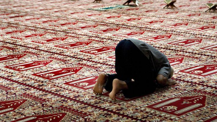 Bekymring. Når jeg ser på, hvad der sker i den arabiske verden, hvor moskeer og kirker bliver bombet pga. religion og magtkampe, så stiger mine bekymringer. Jeg er muslim og er på ingen måde racist eller fremmedhader, men jeg er meget bekymret for Danmarks fremtid.