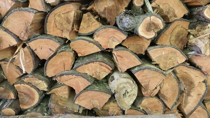 Ready for winter! A small part of the firewood stack. #winter #wood