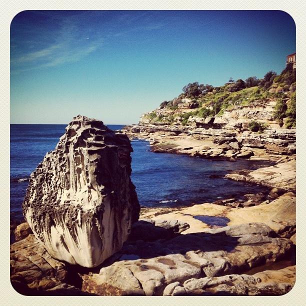 Bondi Rock #atbondi #bondi #sydney #rock #coast #coastalwalk #ocean