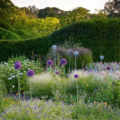 Bluebell Cottage Gardens and Nursery in Cheshire-Pretty
