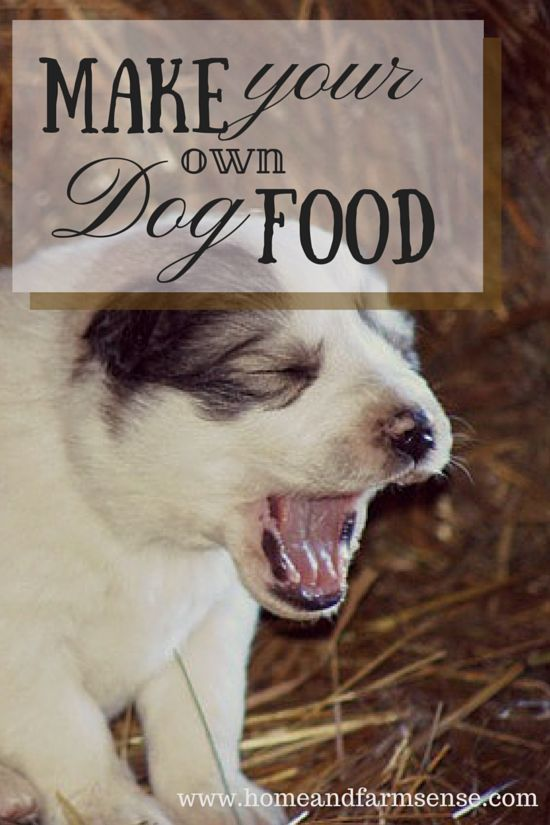 You can make healthier food for your dog from much of what you can grow/raise on a farm - here is how we do it...