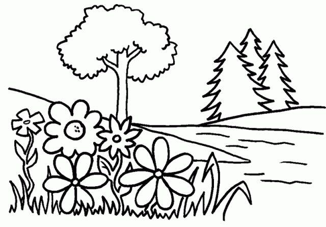 เรียนภาษาอังกฤษ ความรู้ภาษาอังกฤษ ทำอย่างไรให้เก่งอังกฤษ  Lingo Think in English!! :): ภาพระบายสีต้นไม้ Tree Coloring Pages