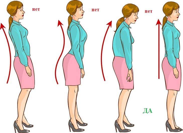 Ровная спина упражнения в картинках
