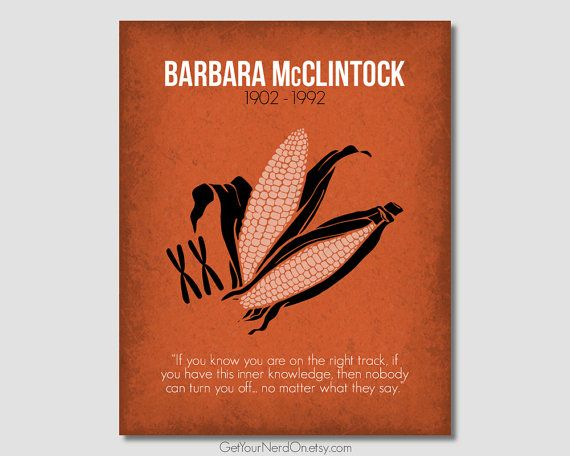 Notable Nerd Poster - Barbara McClintock - Wall Art Print - Available as 8x10, 11x14 or 16x20