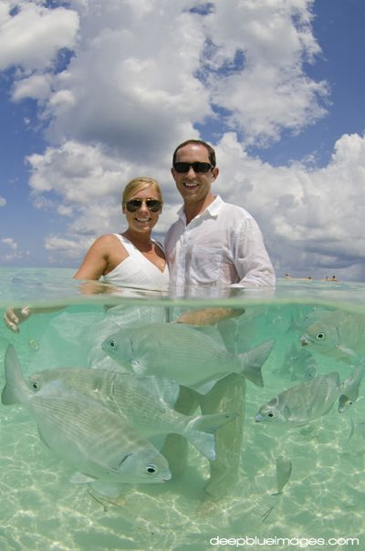 "Cayman Islands ""Trash the Dress"" with fish! www.deepblueimages.com"