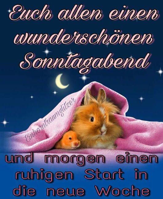 Pin Von Silke Höfler Auf Basteln: Pin Von Silke Weiner Auf Sprüche Gute Nacht