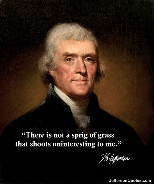 """There is not a sprig of grass that shoots uninteresting to me."" -- Thomas JeffersonJeffersontru Rennaissance, Precious Gift, Jefferson Quotes, Thomas Jefferson Tru, Thomas Jeffersontru, Relatable Quotes, Births, Things Wise, The Roller Coasters"