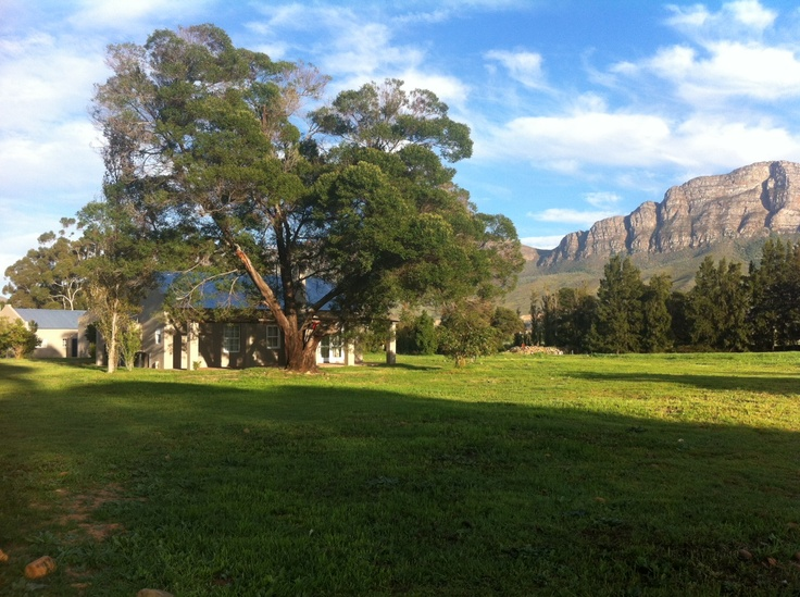 view from Cottage Nr. 14 at Saronsberg Wine Estate, Tulbagh