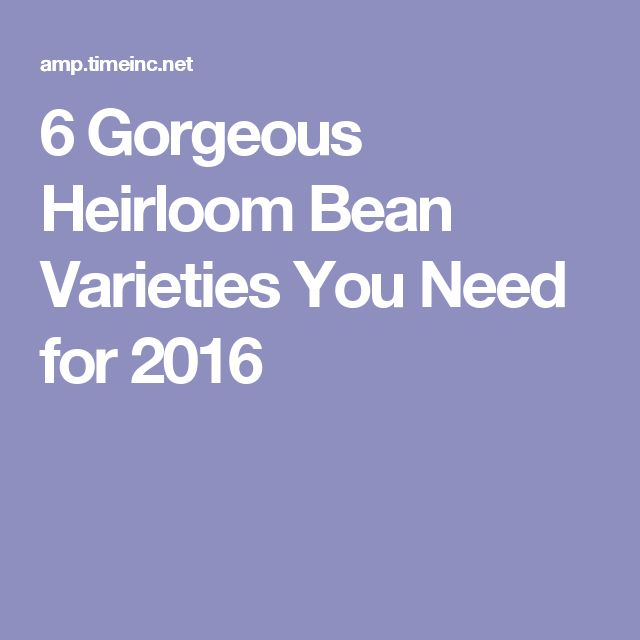 6 Gorgeous Heirloom Bean Varieties You Need for 2016