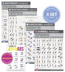 """Set of 6 Exercise Workout Posters for Women Laminated 19""""X27"""""""