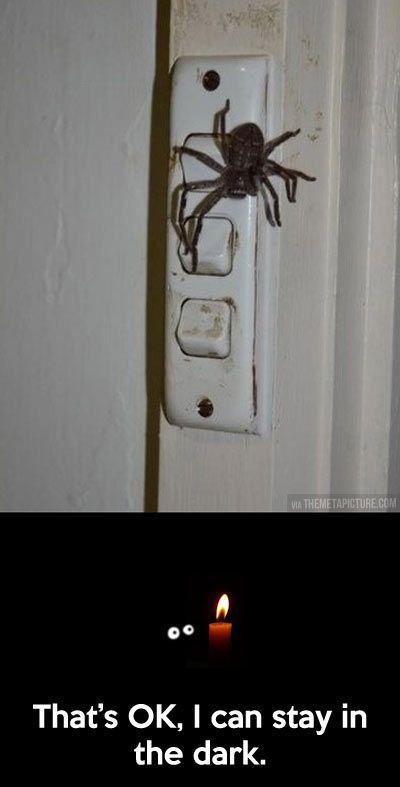 Lights, who needs them?