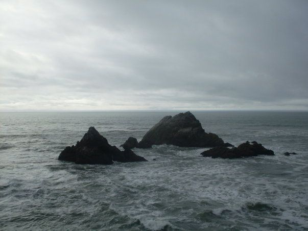 Seal Rocks (view from The Cliff House restaurant, San Francisco, CA)
