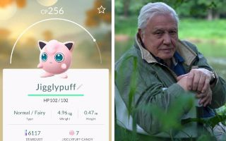 "David Attenborough and Pokemon Go is the perfect combination. An amazing video has mashed up his wildlife commentary with footage of the game to create a taste of what it would be like if he narrated the game. Much better than a video game soundtrack, we hear him say: ""That is one bat that will [...]"